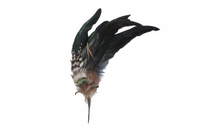 feather bundle medium BAZ