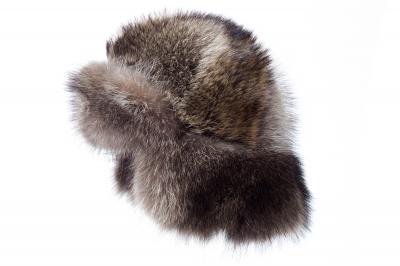 Helm HIRO Wilder Waschbär